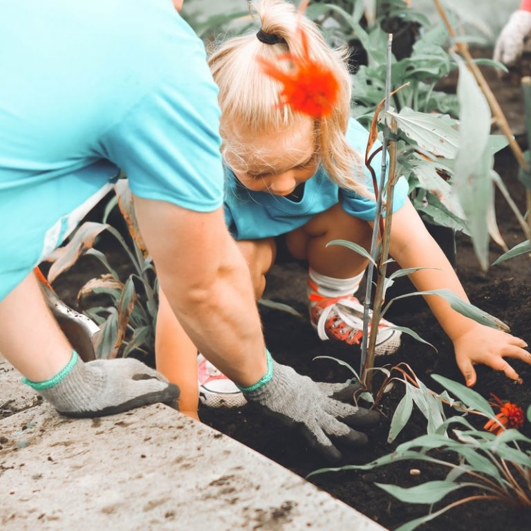 girl in blue top planting outdoors